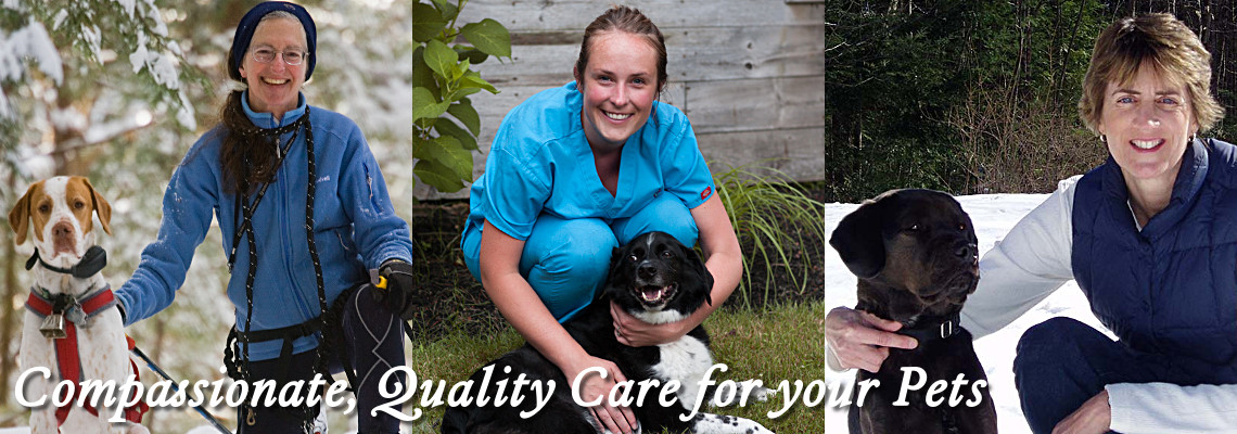 Compassionate, Quality Care for your Pets